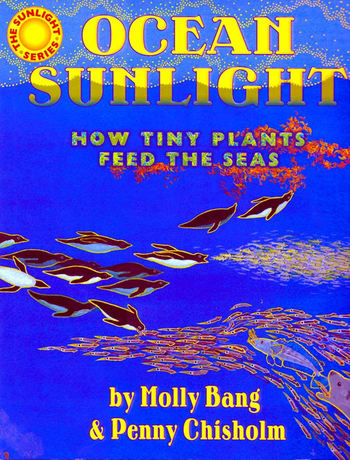 ocean-sunlight-cover